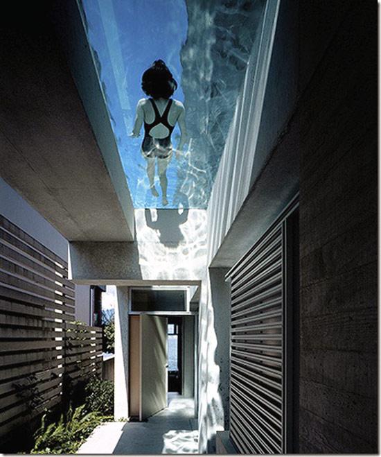 Nageuse Dans Piscine Aquarium à Fond Transparent