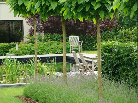 amenagement-dune-piscine-et-un-jardin